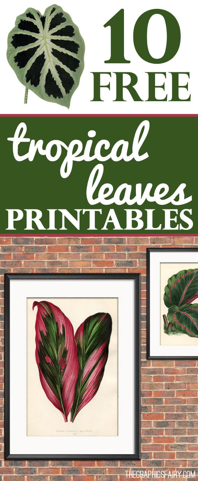 Free Printable Leaves