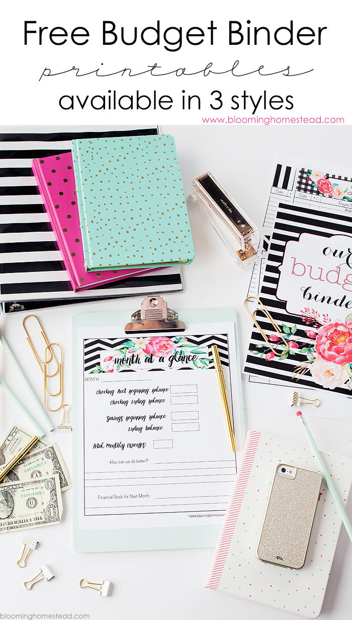 11 Free Budget Printables To Help Get Your Money Under Control - Free Printable Financial Binder