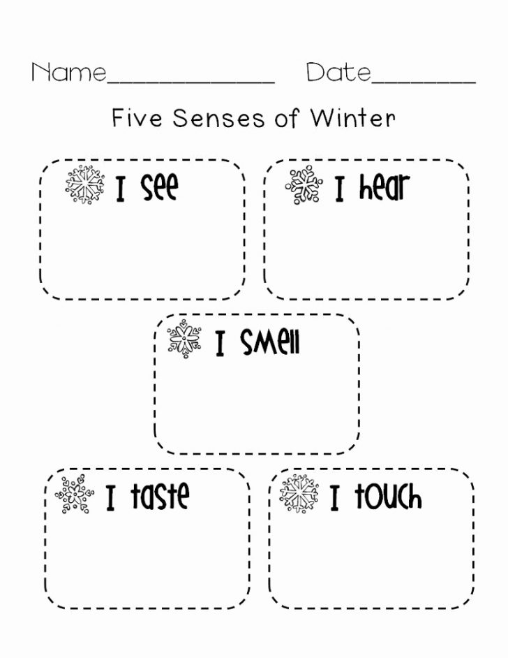 Free Printable Worksheets Kindergarten Five Senses