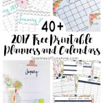 40+ Awesome Free Printable 2017 Calendars And Planners   Sparkles Of   Free Cute Printable Planner 2017