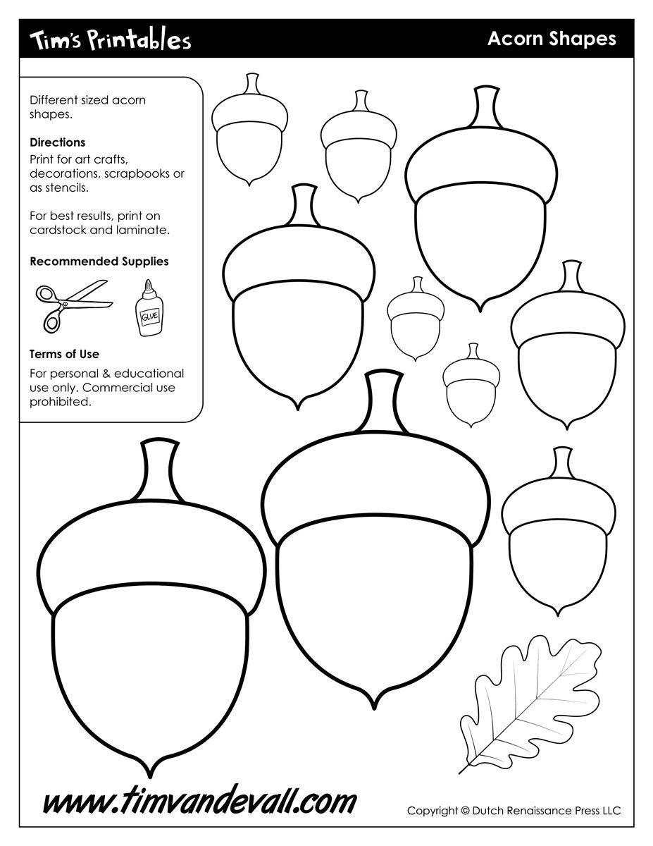 Acorn Templates / Acorn Shapes   Preschool: Fall   Pinterest   Fall - Acorn Template Free Printable