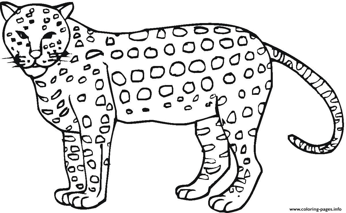 Animal Cheetah Print Out S3296 Coloring Pages Printable - Free Printable Cheetah Pictures