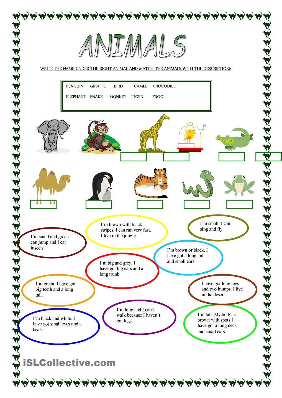 Animals | Free Esl Worksheets | Teachers Resources | Pinterest - Free Printable Esl Resources