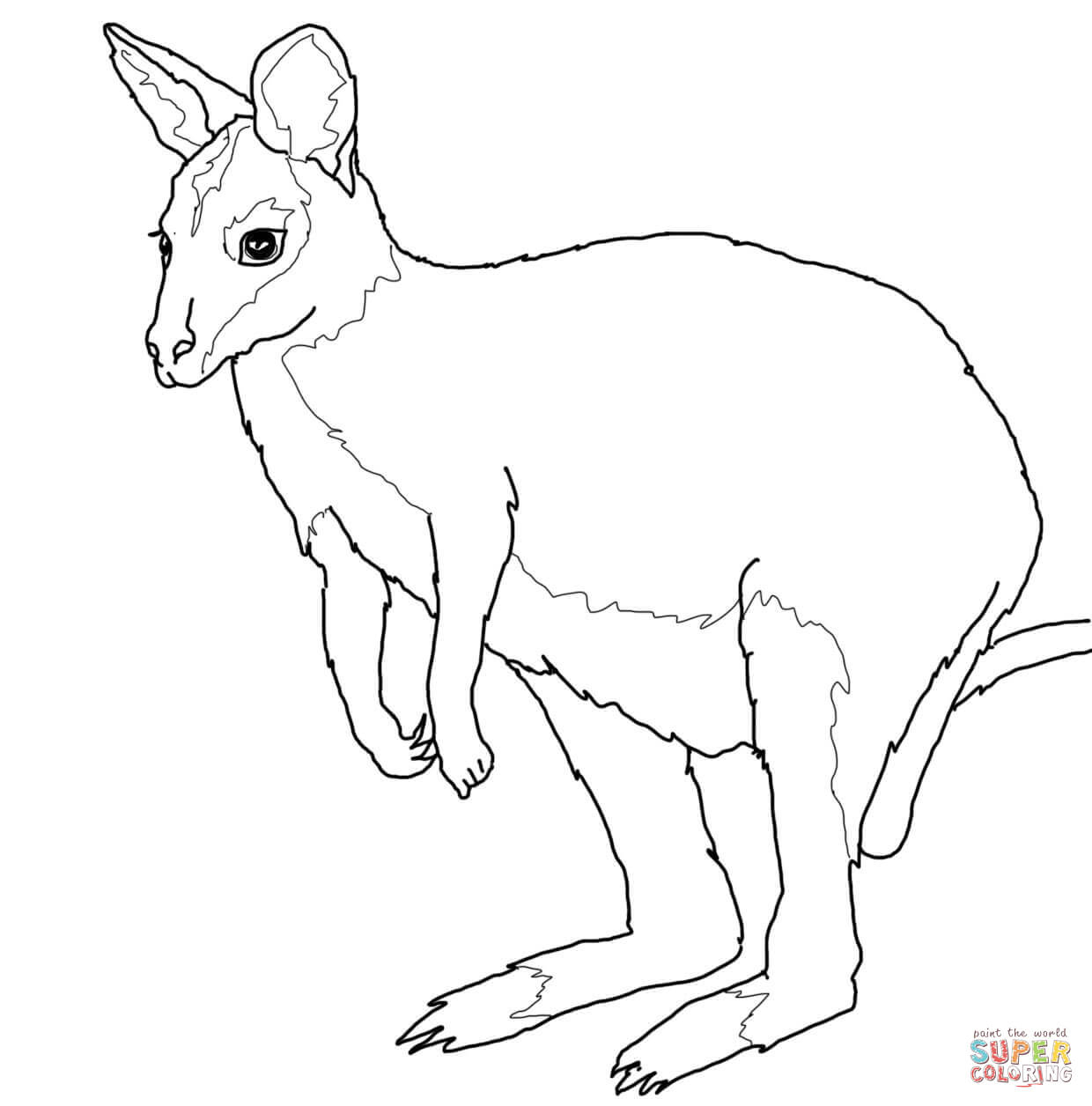 Australian Animals Coloring Pages   Free Printable Pictures - Free Printable Pictures Of Australian Animals