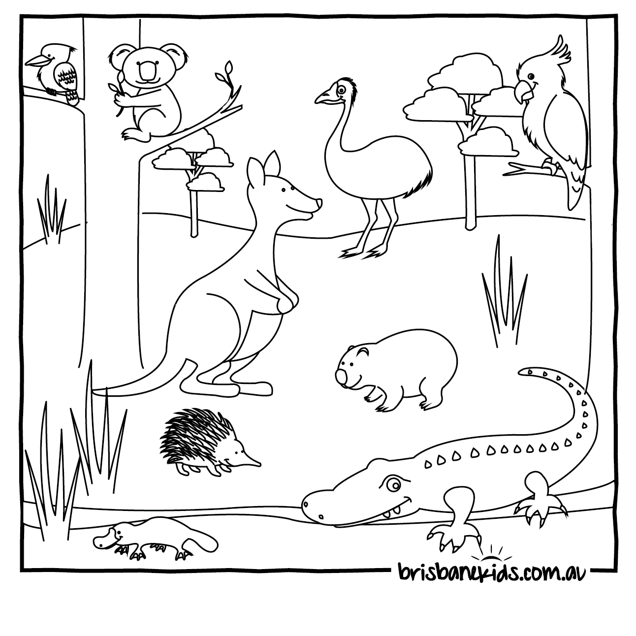 Australian Animals Colouring Pages   Coloring Pages Of All Ages - Free Printable Pictures Of Australian Animals