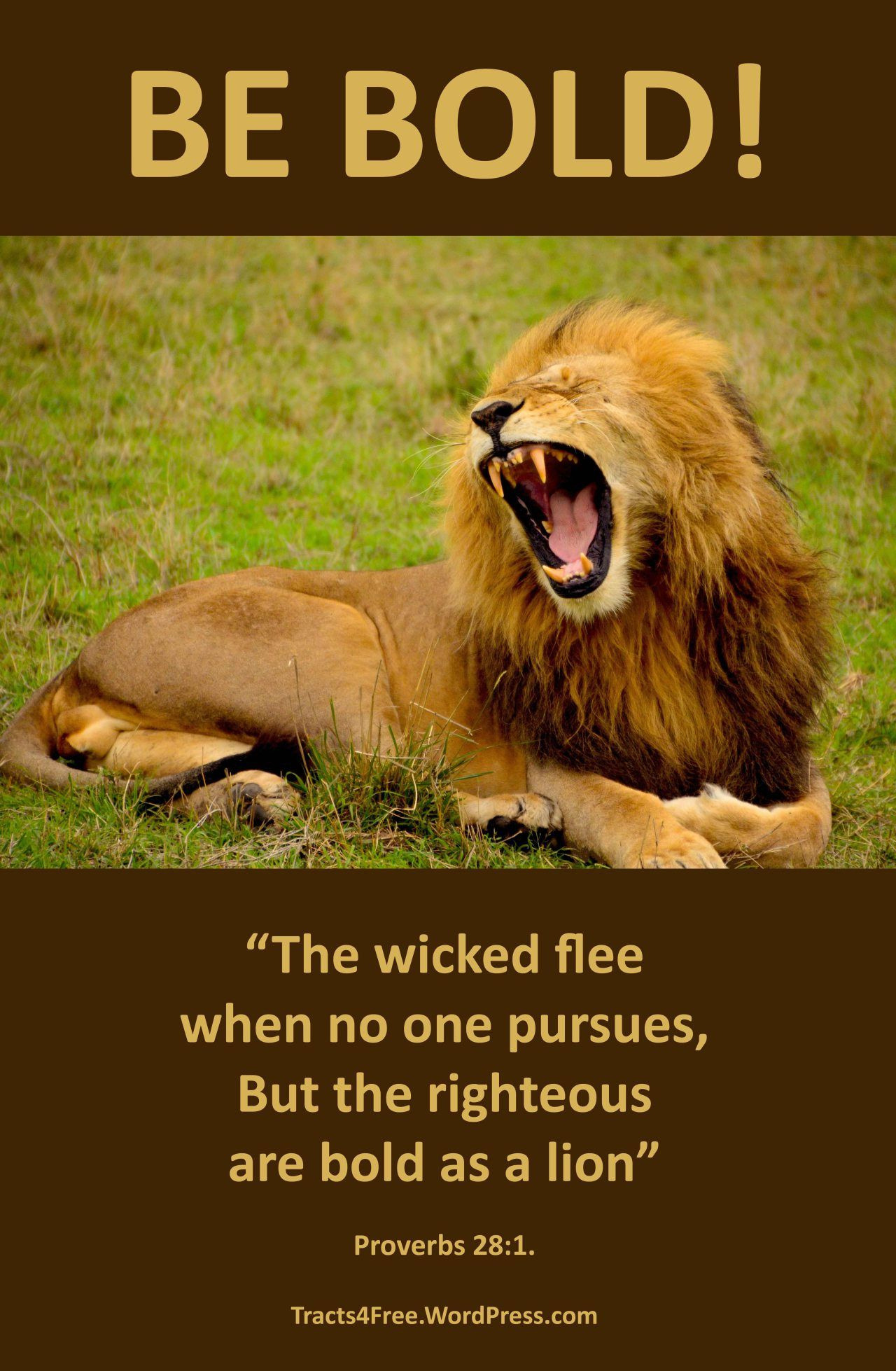 Christian Sports Posters 1 | Religious | Pinterest | Animals, Lion - Free Printable Sports Posters