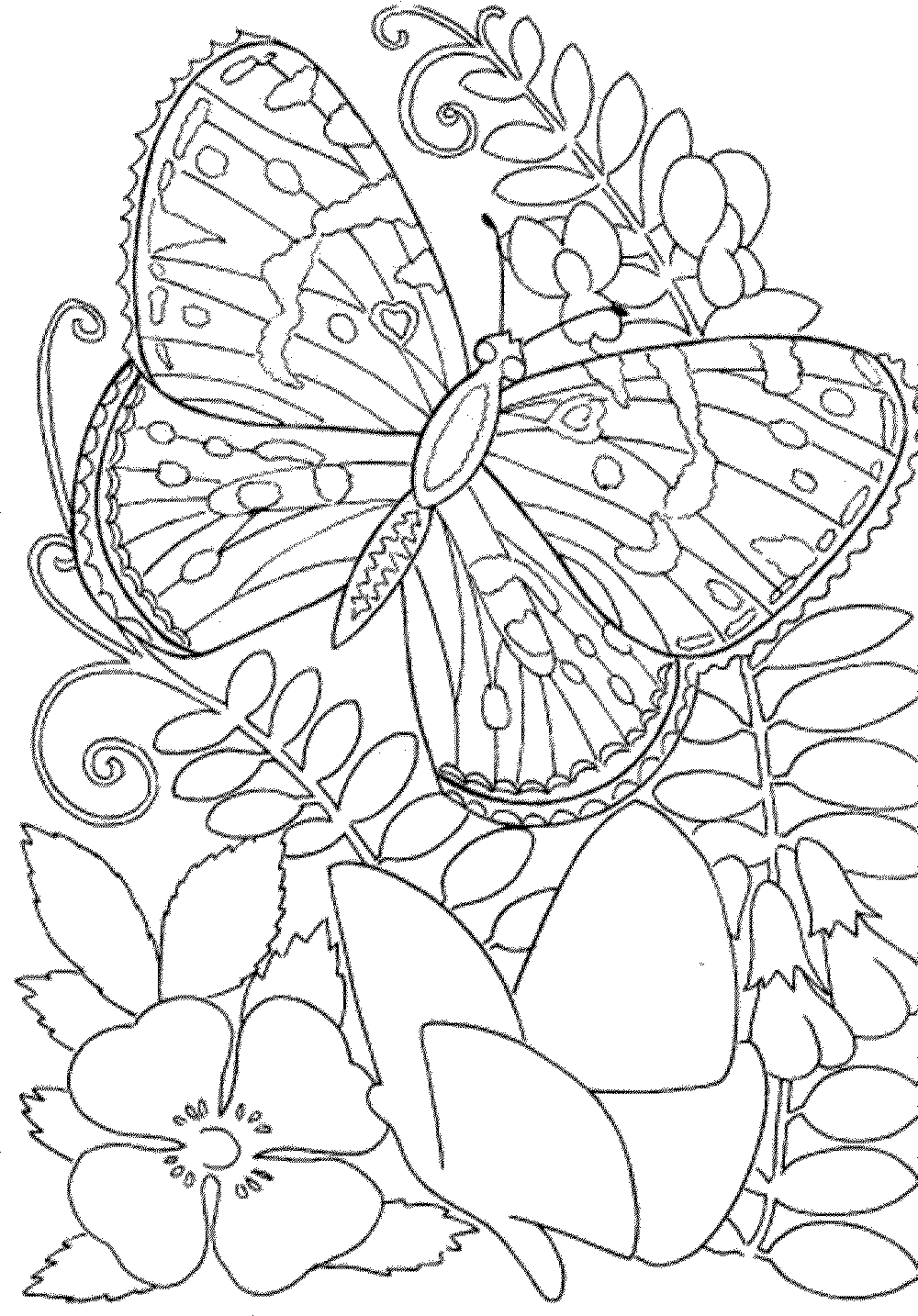 Coloring Pages ~ Coloring Pages Free Printableook Photo Inspirations - Free Printable Coloring Books For Adults