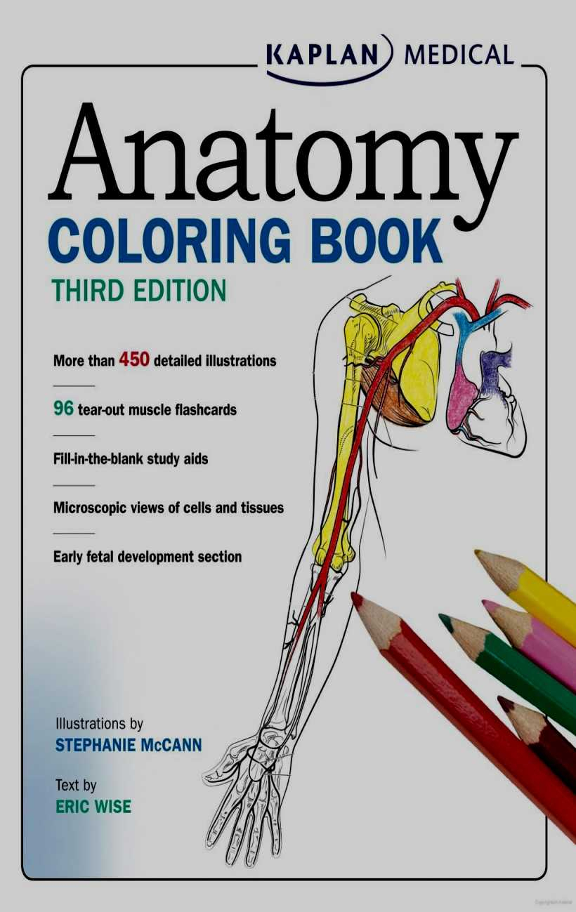 Coloring Pages : Coloring Pagesle Book Free Anatomy On Google - Free Printable Muscle Flashcards