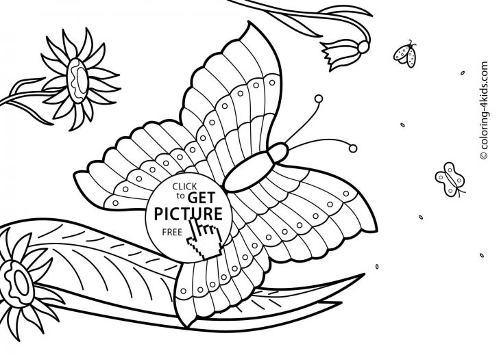 Summer Coloring Sheets Free Printable