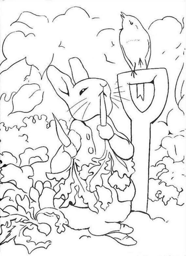 Free Printable Peter Rabbit Coloring Pages