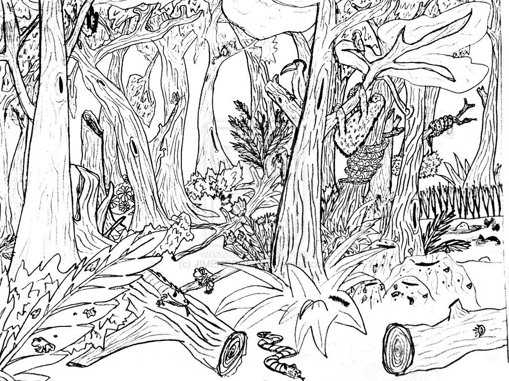 √ Free Printable Nature Coloring Pages For Kids - Free Printable Nature Coloring Pages For Adults
