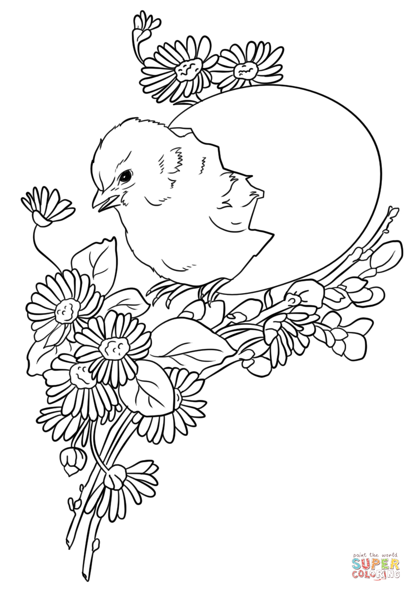 Easter Chick Coloring Page | Free Printable Coloring Pages - Free Printable Easter Baby Chick Coloring Pages