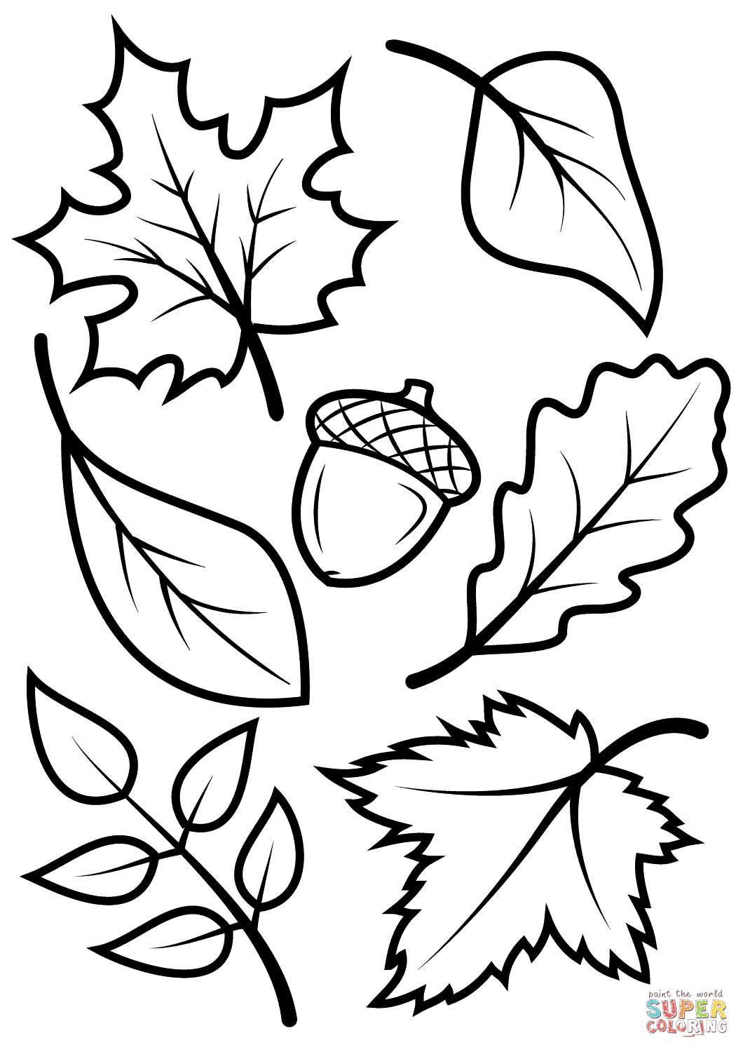 Fall Leaves And Acorn Coloring Page   Free Printable Coloring Pages - Acorn Template Free Printable