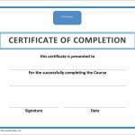 Forklift Certificates Templates Free New Forklift Certification Card   Free Printable Forklift Certification Cards