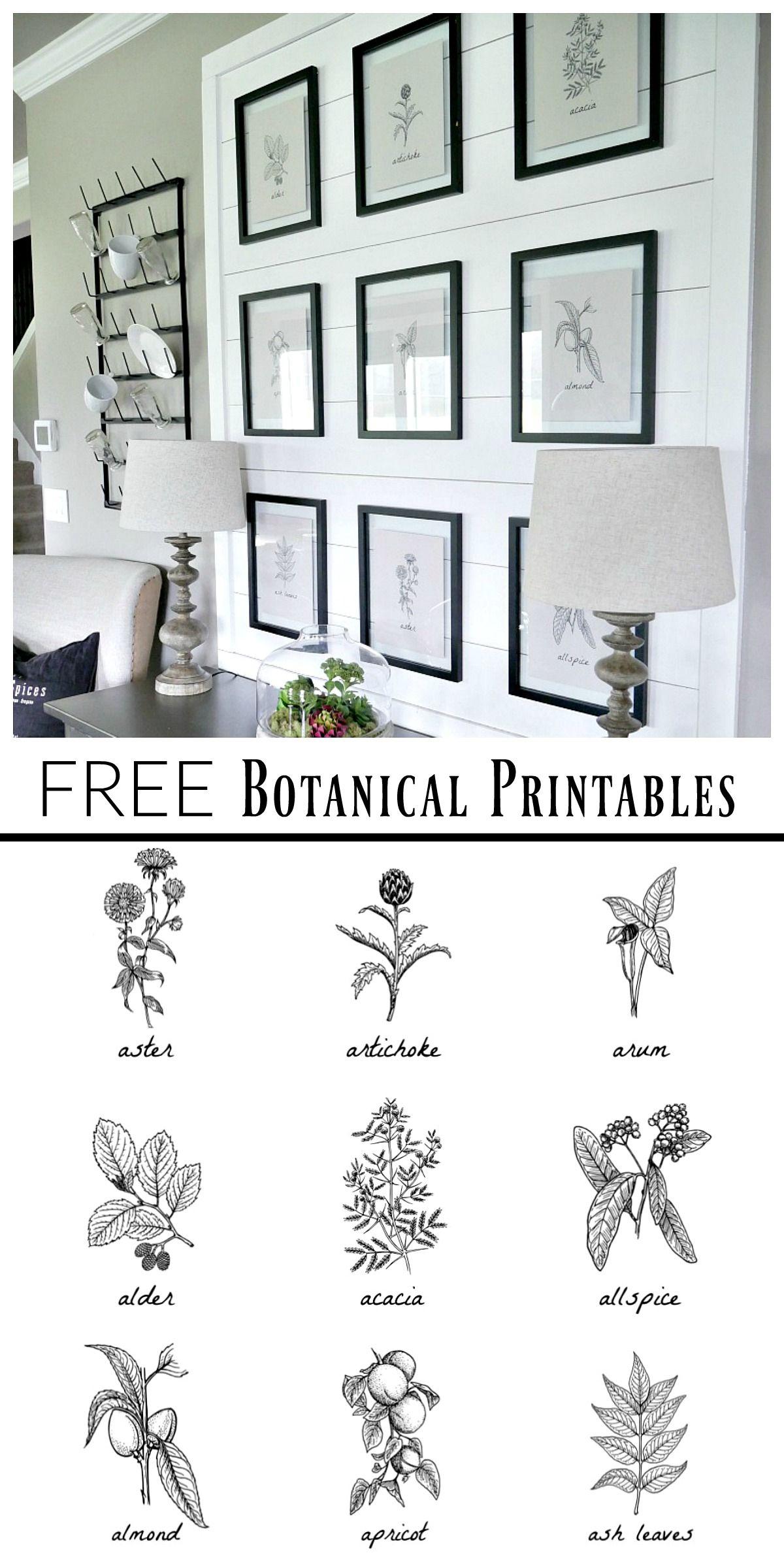 Free Botanical Prints | Bloggers' Best Diy Ideas | Diy Wall Art - Free Black And White Printable Art