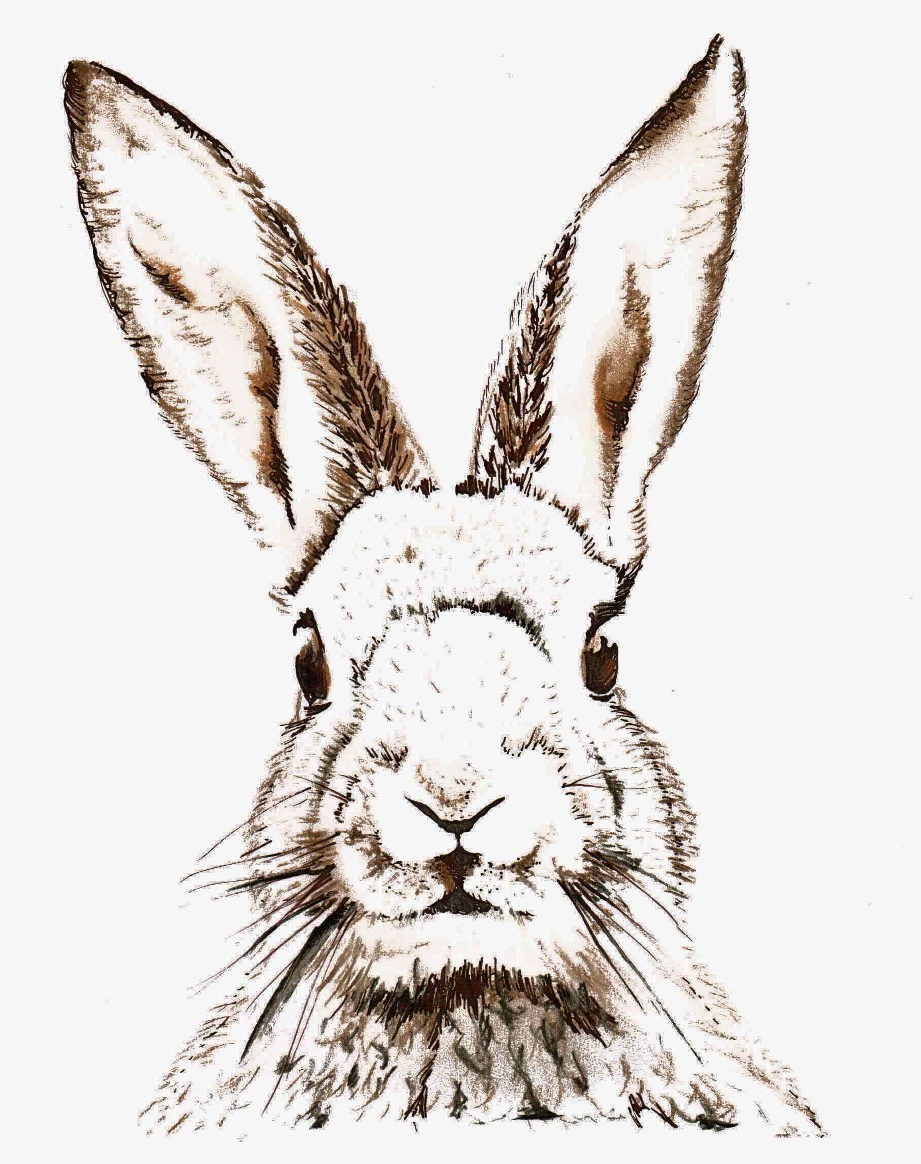 Free Easter Printable & Vintage Clip Art | Craftlady | Pinterest - Free Printable Vintage Easter Images