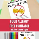 Free Nut Free Classroom And Nut Free School Signs. Free Printable   Printable Peanut Free Classroom Signs