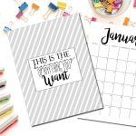 Free Printable 2017 Monthly Calendar And Weekly Planner With Cute   Free Cute Printable Planner 2017