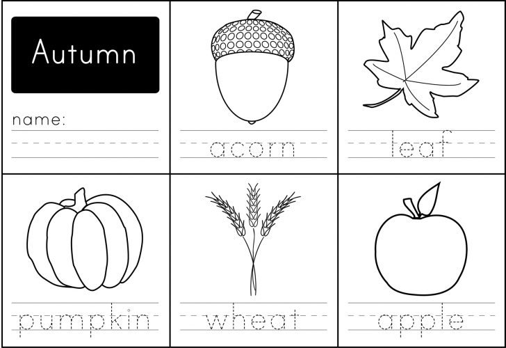 Free Printable Autumn Worksheets