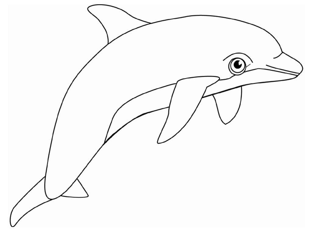 Free Printable Dolphin Coloring Pages For Kids | Dolphin | Dolphin - Dolphin Coloring Sheets Free Printable