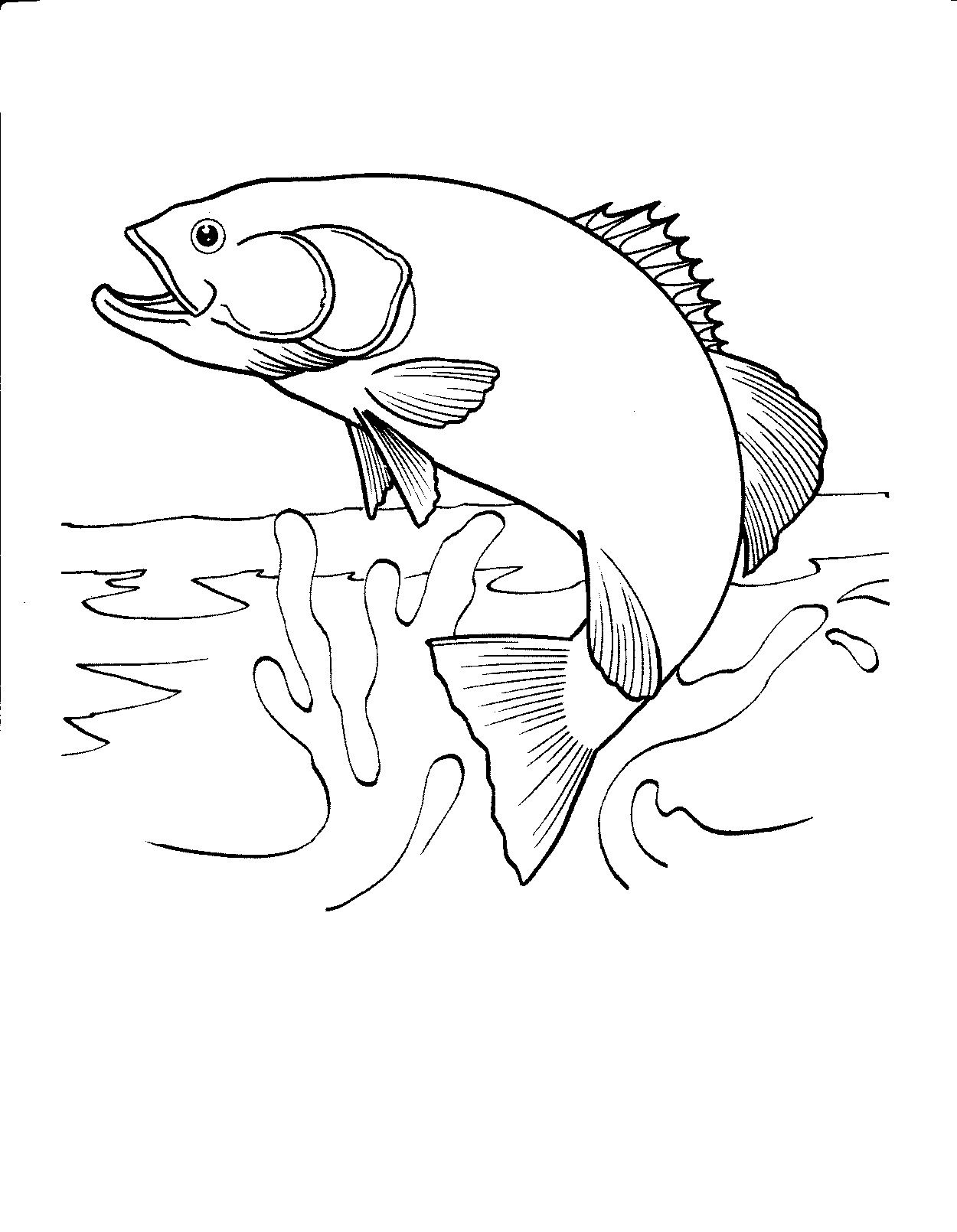 Free Printable Fish Coloring Pages For Kids   Honey Look   Fish - Free Printable Fish Coloring Pages