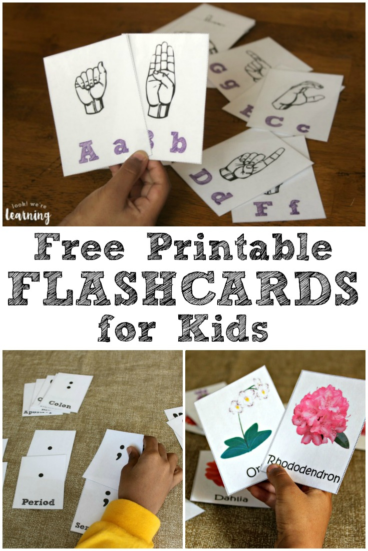 Free Printable Flashcards - Look! We're Learning! - Free Printable Vocabulary Flashcards