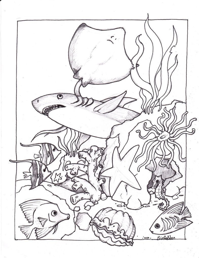 Free Printable Ocean Coloring Pages For Kids   Sand & Water Theme - Free Printable Sea Creature Templates