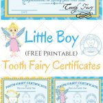 Free Printable Tooth Fairy Certificates | Fabnfree // Freebie Group   Free Printable Tooth Fairy Certificate