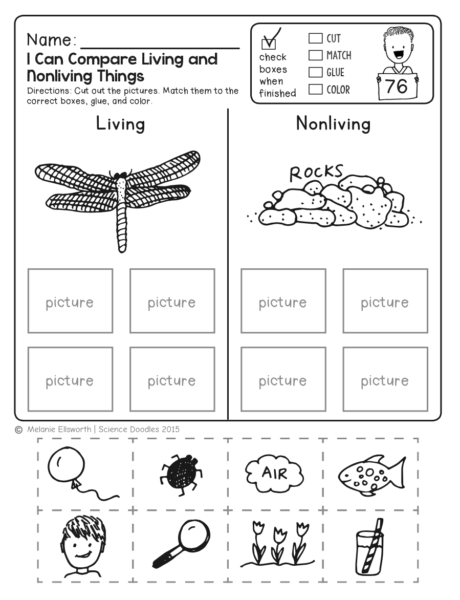 Freebie! No-Prep Kindergarten Science Doodle Printables   T E A C H - Free Printable Science Worksheets