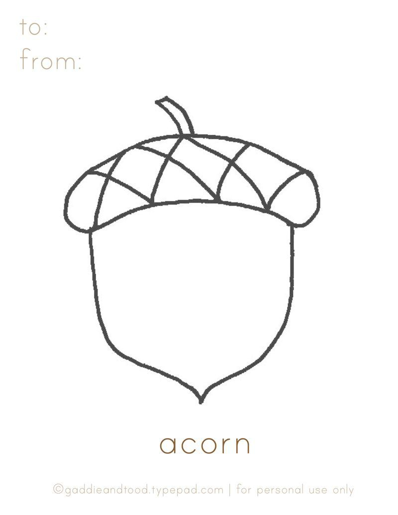 Gaddieandtood.typepad Free - Printable Acorn Coloring Page   For - Acorn Template Free Printable