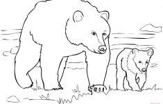 Polar Bear Printable Pictures Free