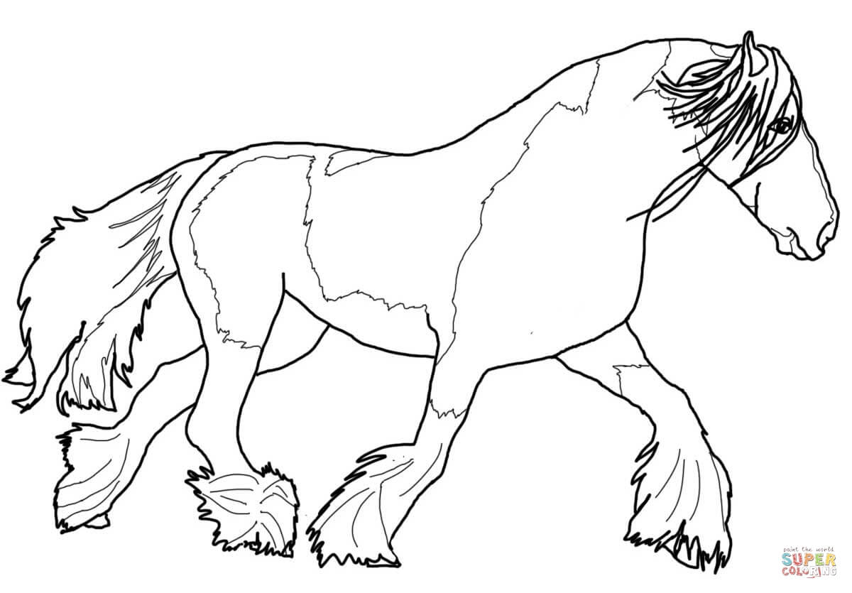 Gypsy Vanner Horse Coloring Page   Free Printable Coloring Pages - Free Printable Horse Coloring Pages