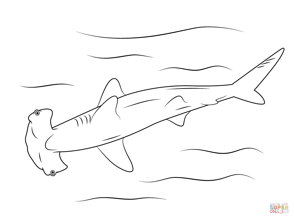 Hammerhead Shark Coloring Page | Free Printable Coloring Pages - Free Printable Shark Coloring Pages