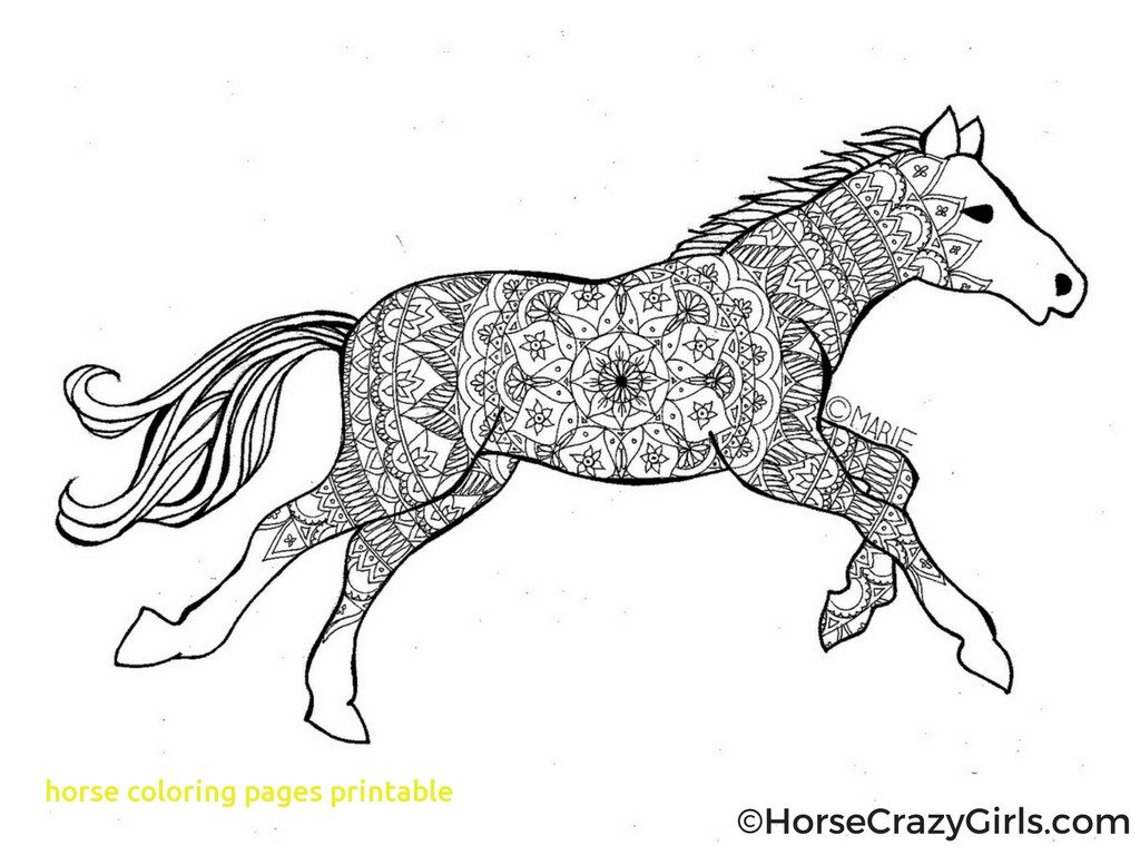 Horses Coloring Pages Printable And Free Horse For Adults Advanced - Free Printable Horse Coloring Pages