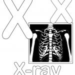 Letter X Alphabet Coloring Pages   3 Free Printable Versions   Free Printable Animal X Rays
