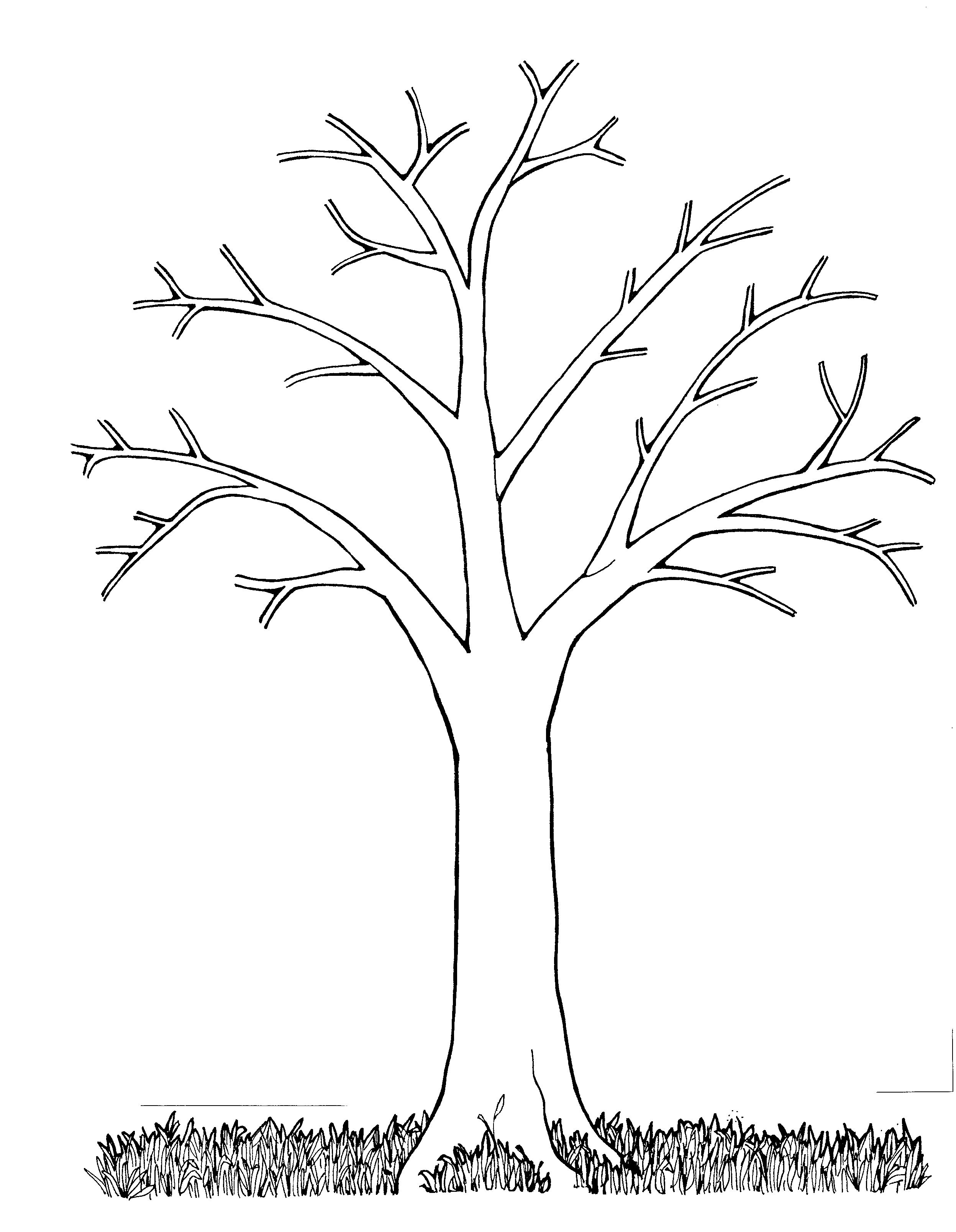 Mormon Share } Tree Bare   Melinda   Tree Templates, Coloring Pages - Free Printable Tree Template