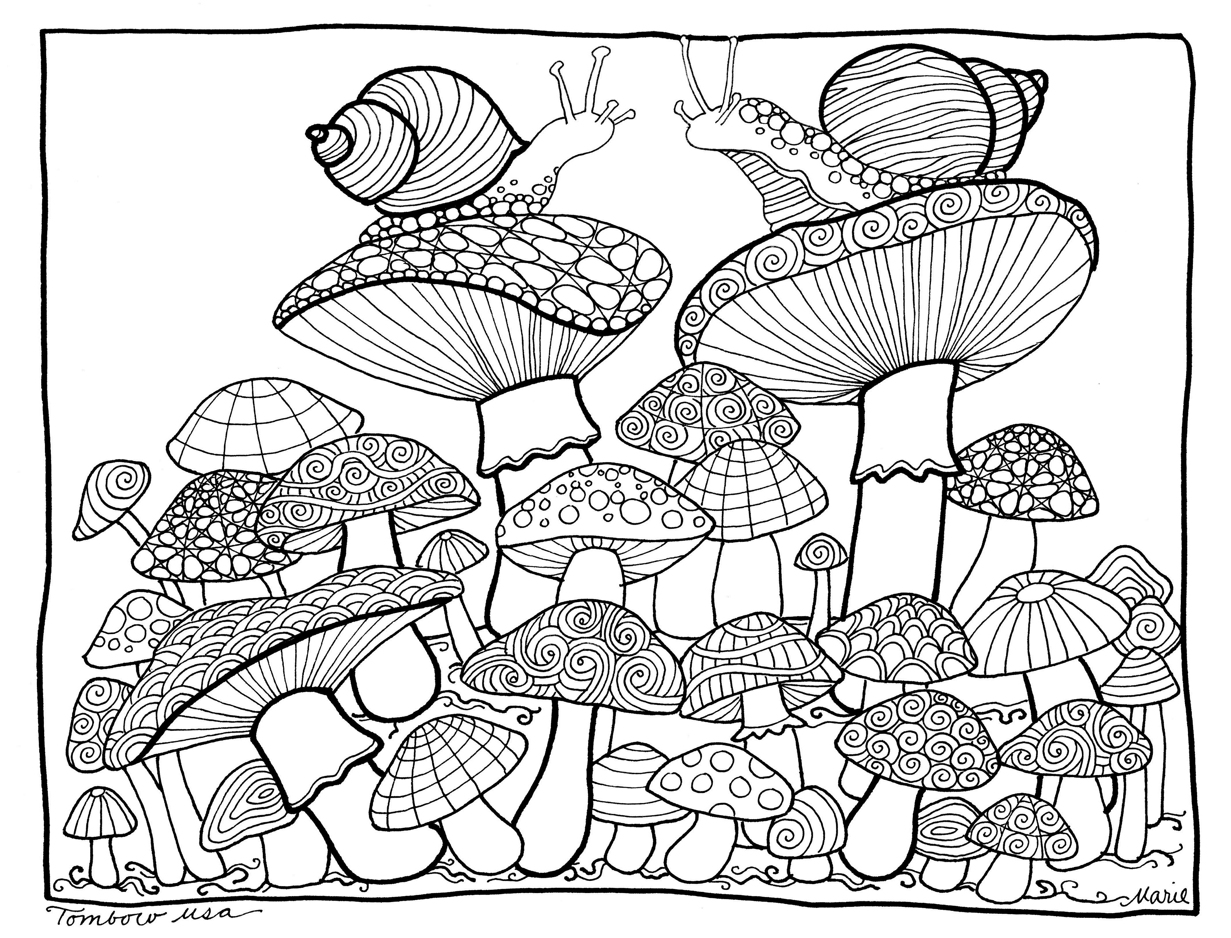 Mushrooms Coloring Pagetombow Usa | Paper | Coloring Pages, Free - Free Printable Mushroom Coloring Pages
