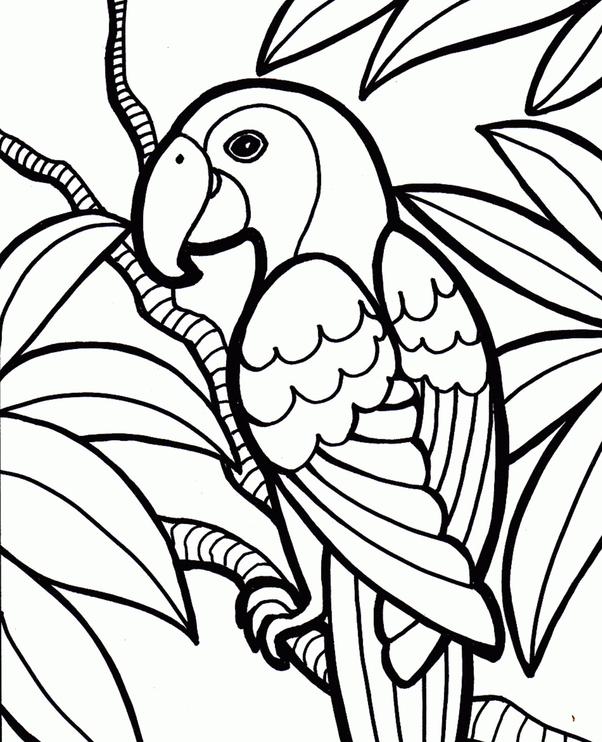 Parrot Coloring Pages #35552 - Free Printable Parrot Coloring Pages