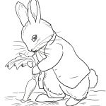 Peter Rabbit Coloring Pages   Coloringtop | Embroidery/ Animals   Free Printable Peter Rabbit Coloring Pages