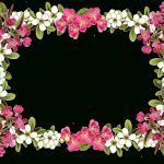 Picture Flower Borders And Frames   Rr Collections   Free Printable Clip Art Borders