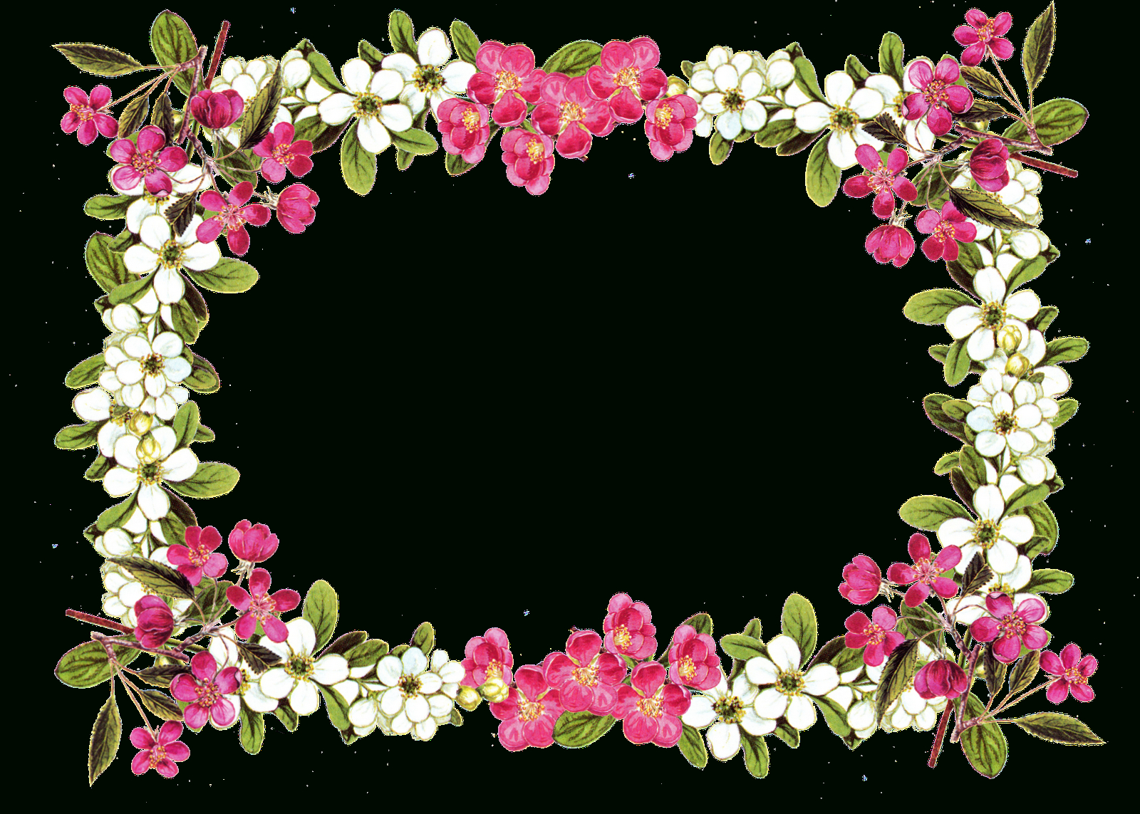 Picture-Flower Borders And Frames - Rr Collections - Free Printable Clip Art Borders