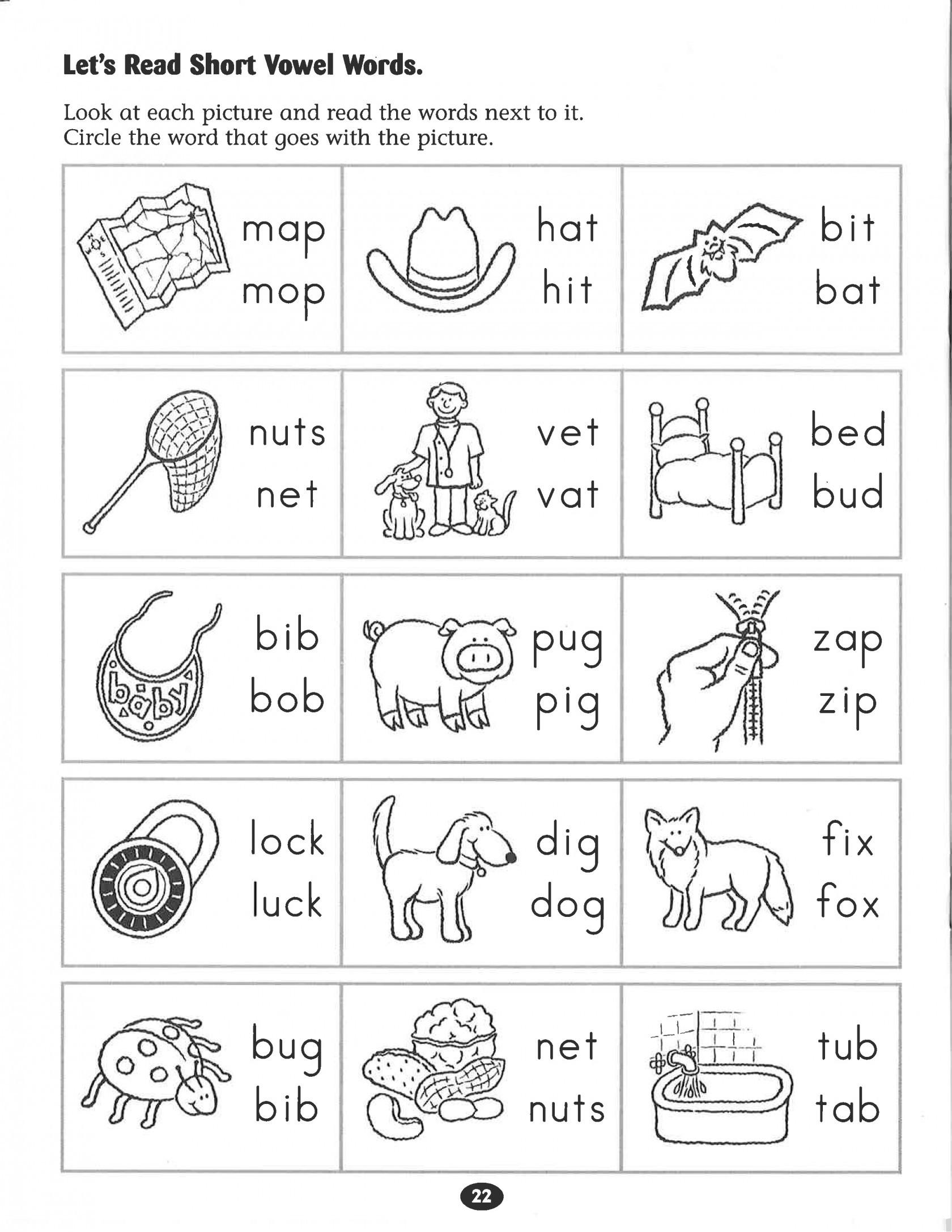 Prek Worksheets Pdf Preschool Worksheet Hibernation Valid First - Free Printable Hibernation Worksheets