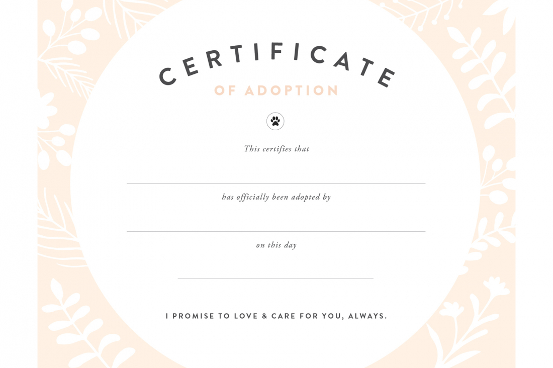Pretty Fluffy - Free Printable Adoption Certificate