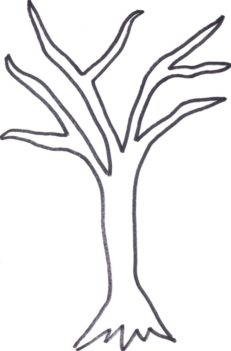 Printable Tree Trunk   Here Is The Tree Outline If Anyone Wants To - Free Printable Tree Template