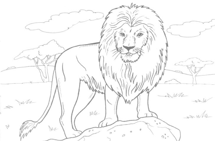 Free Printable Realistic Animal Coloring Pages