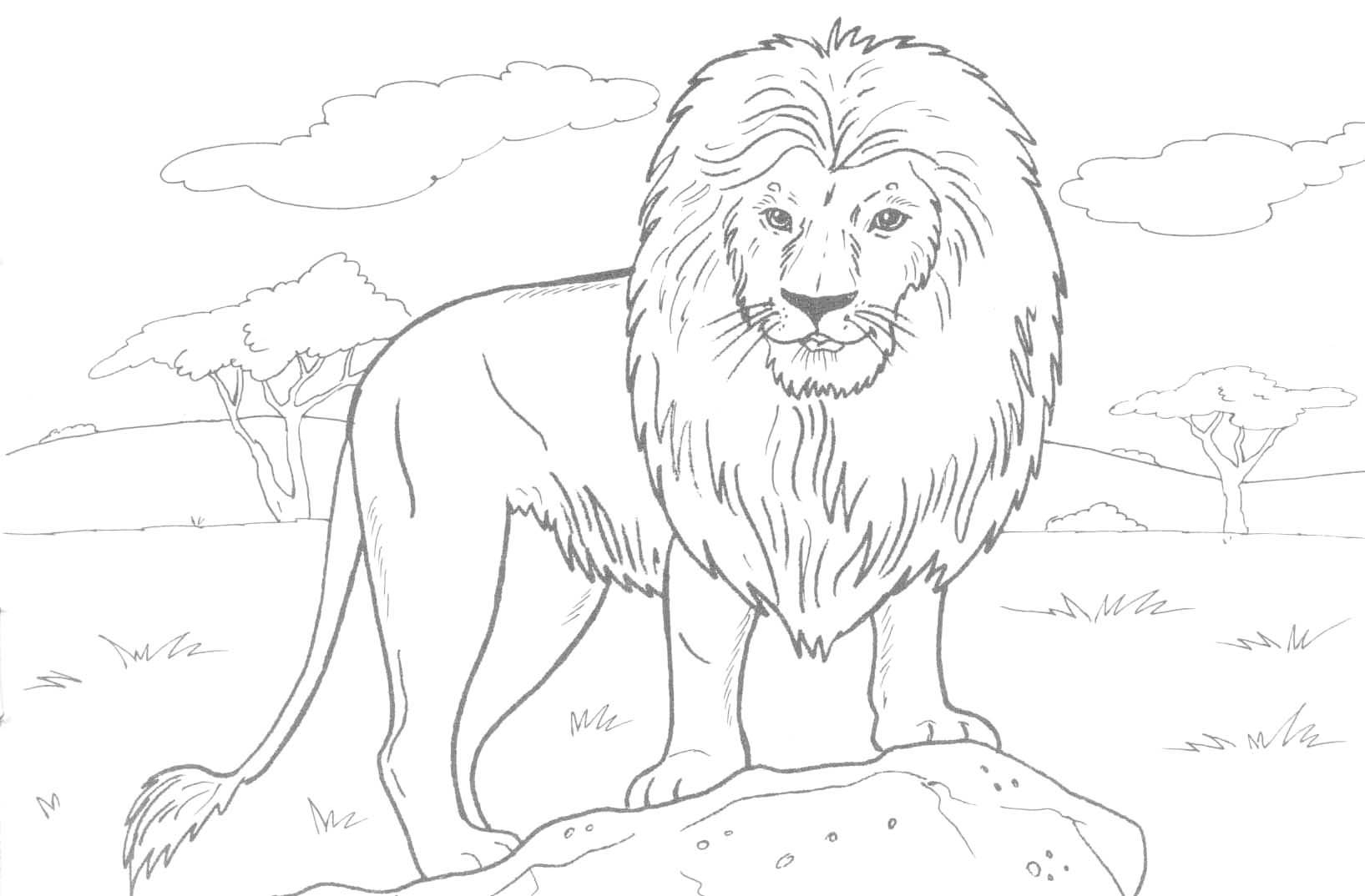 Realistic Animal Coloring Pages - Lezincnyc - Free Printable Realistic Animal Coloring Pages
