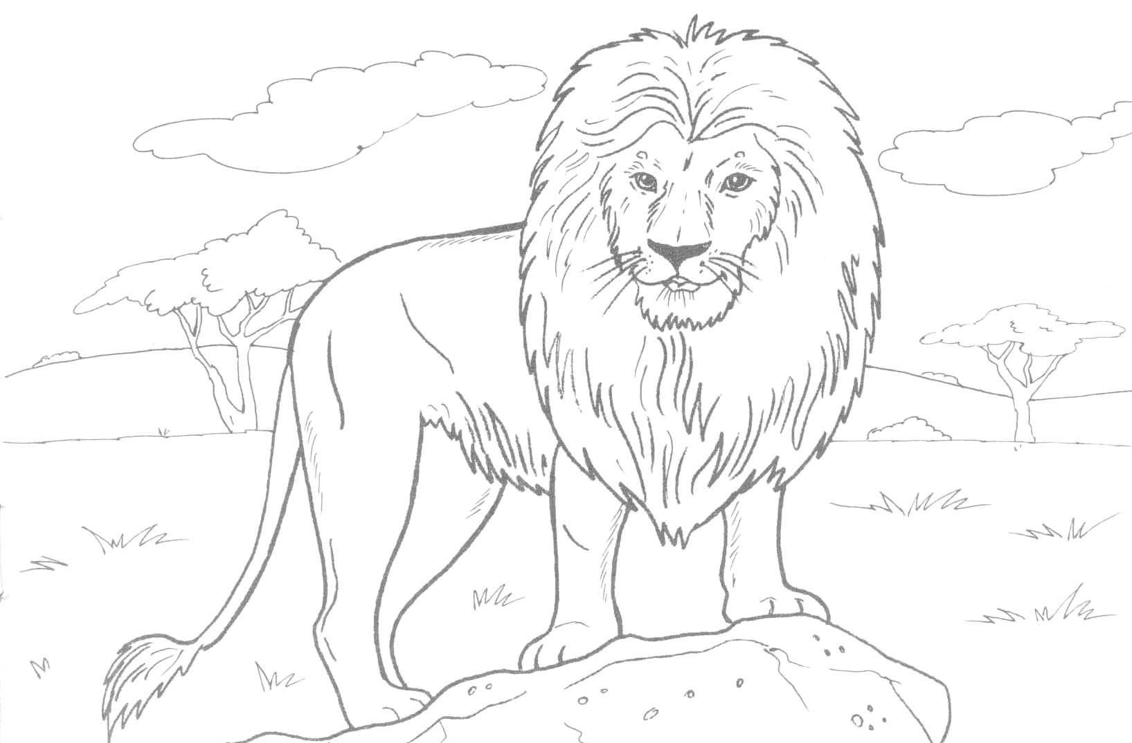 Realistic Animal Coloring Pages - Lezincnyc - Free Printable Realistic Animal Coloring Pages