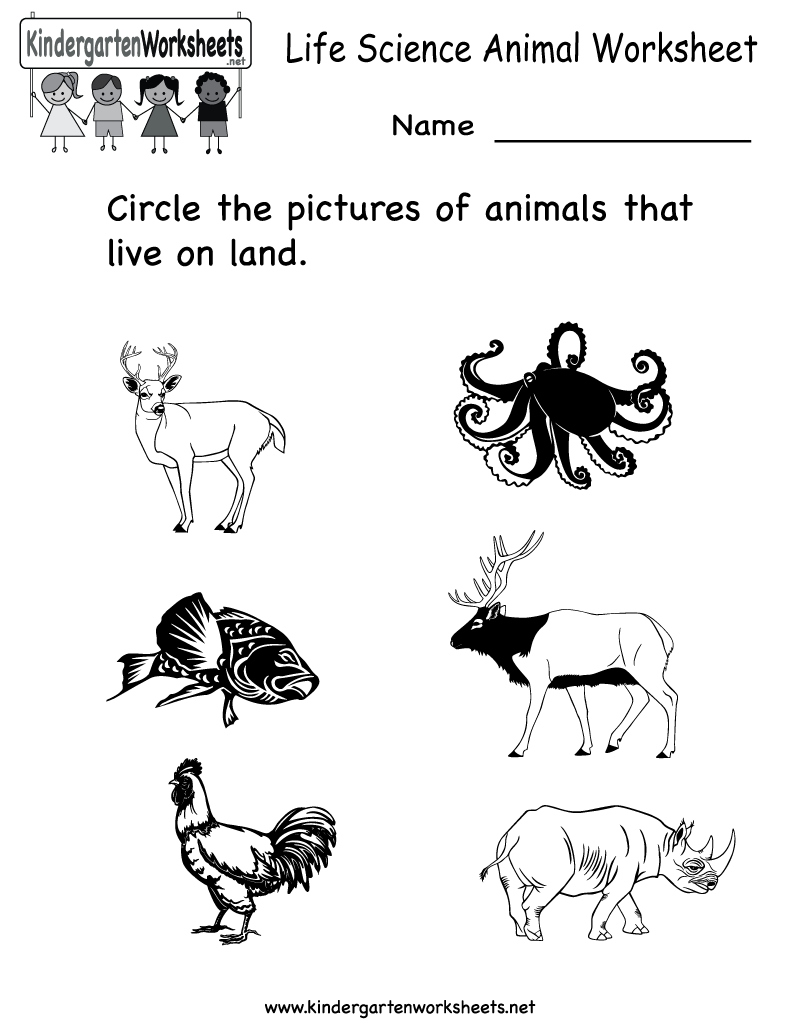 Science Printables For Kids Life Animal Worksheet Free - Free Printable Worksheets For Kids Science