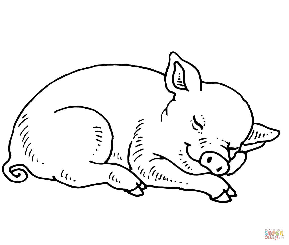 Sleeping Baby Pig Coloring Page | Free Printable Coloring Pages - Pig Coloring Sheets Free Printable