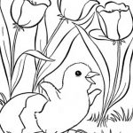 Spring Coloring Pages, Printable Spring Coloring Pages, Free Spring   Free Printable Spring Pictures To Color